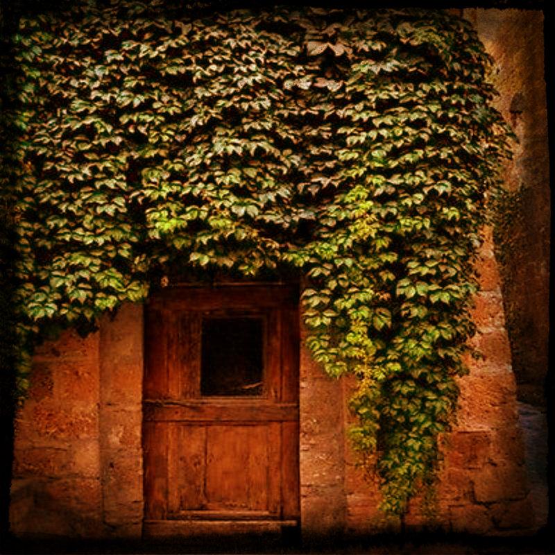 vinesoverdoor